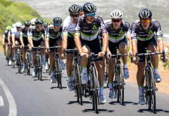 a team of pro cyclists in action