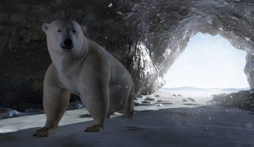 polzr bear inside a rocky ice cave