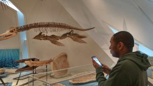 man using smartphone in museum setting