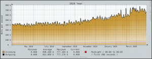 chart shows Internet usage over a year