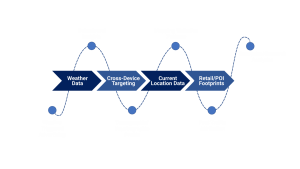 graphics shows data analysis workflow and procedures